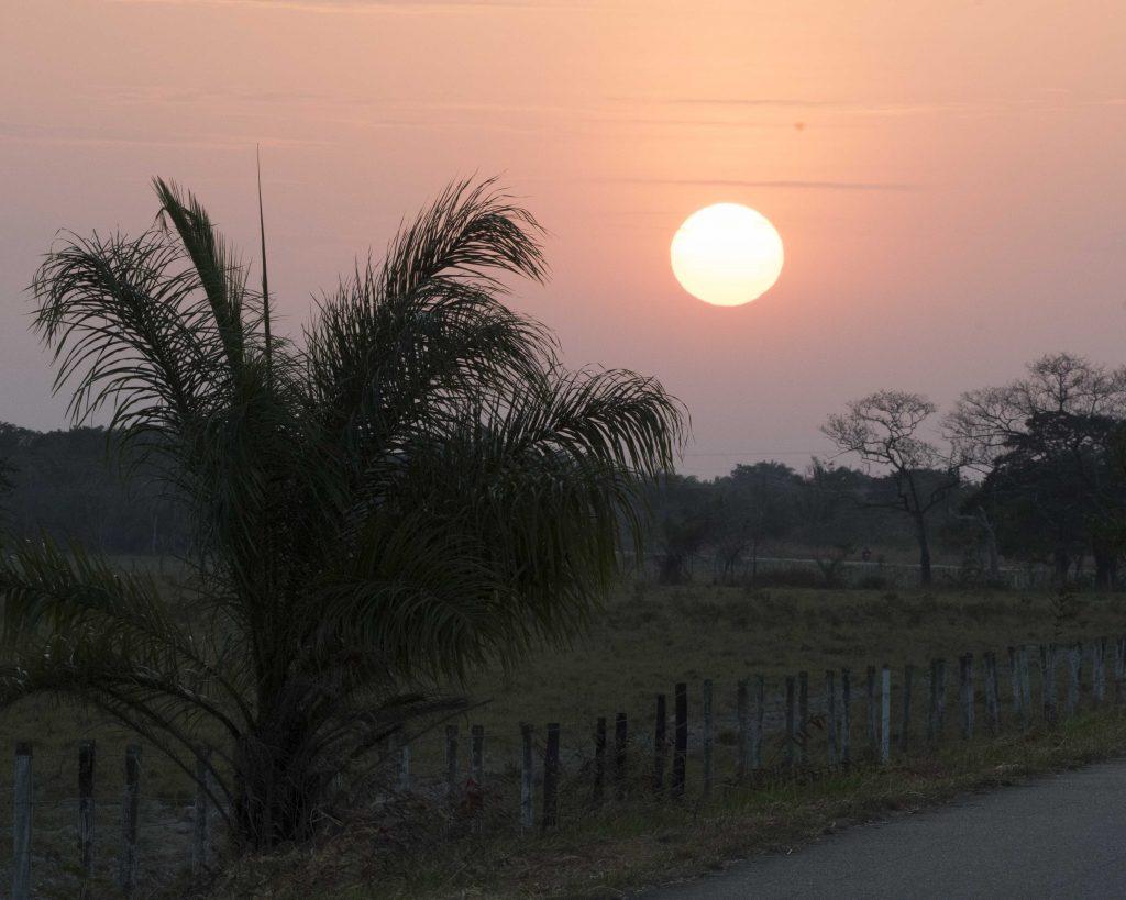 Colombia's Llanos