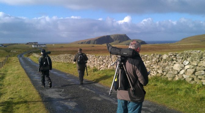 Top Ten Birding Sites – Fair Isle
