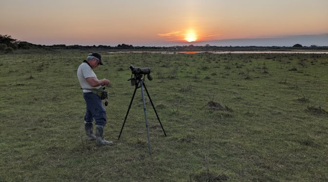 Top Ten Birding Sites – Hato la Aurora