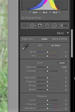 Post-processing - the Lightroom control panel